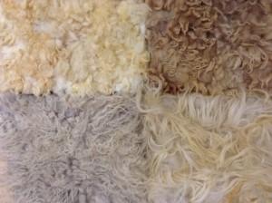 schapenwol isolatie