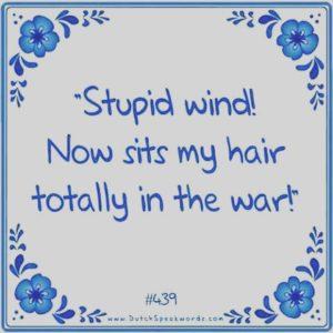stupid-wind
